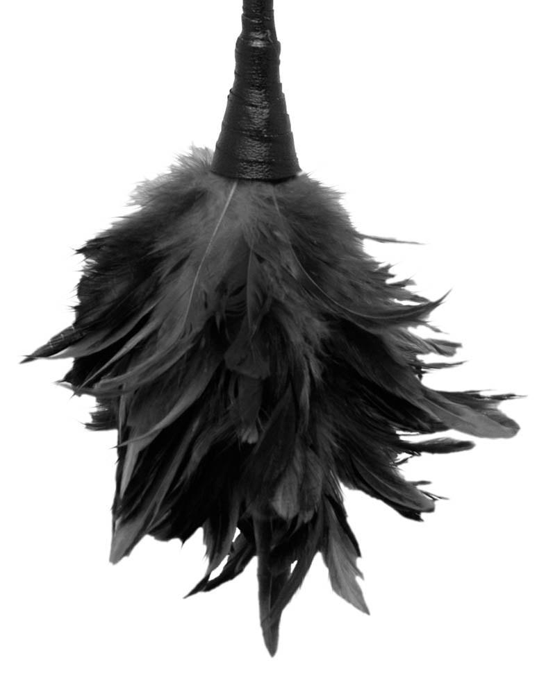 Black Swirl Lace Bra Suspender Set        6360